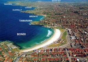 BONDI_Aerial_photo_surfing.wikia.com